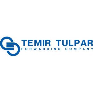 логотип Temir Tulpar