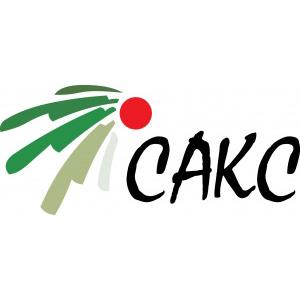логотип Сакс